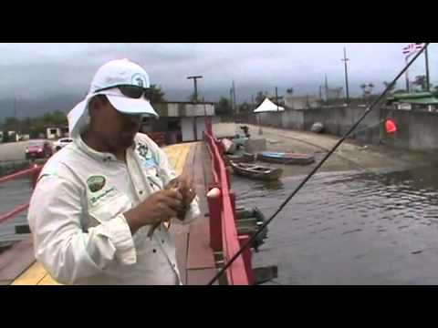 Bertioga pescaria de Parati na boia