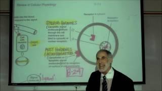 RECEPTOR SITES & SIGNAL MOLECULES; Neurotransmitters, Hormones & Drugs by Professor Fink