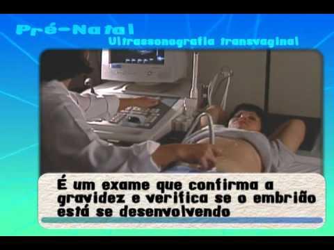 Pré natal Ultrassonografia transvaginal