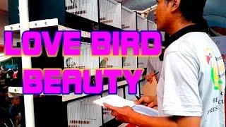 PRESIDEN CUP IV 2016 : Beauty Contest Love Bird di Senayan Jakarta