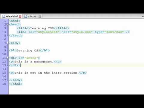 Learn CSS (Tutorial) - Basics + Selectors (For Absolute Beginners)