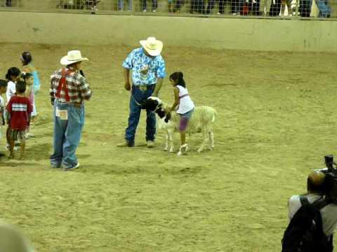Monta de borrego de niños Rodeo de la Expo Feria Guadalupe 2009
