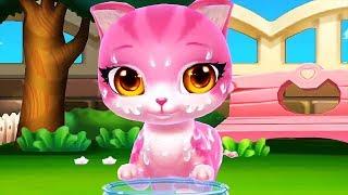 Cat Cartoon Pet Care Game - Bath Kitten Dress Up Feed & Treat Cats - Pet Cartoon Video