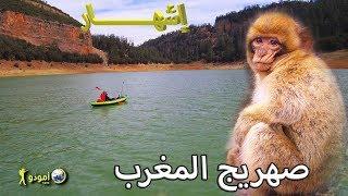 """🌍  """"أمودّو/ مقدمة """"صهريج المغرب"""