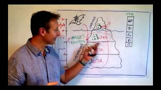 Subconscious Mind Programming Using A 'Magic Window' Of Opportunity