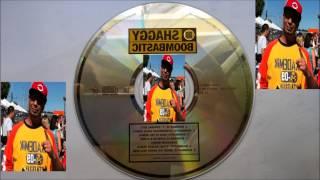 Shaggy - Boombastic (Reggae - Pop Remix) HQ