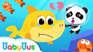 Baby Shark Wanna Make Friends | Shark Song, Dinosaur Rescue Team, Animal Song | BabyBus