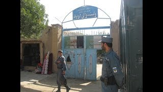 Official: Bomb blast in western Afghanistan kills five