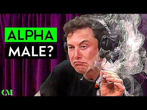 Xxx Mp4 Elon Musk SOCIAL SKILL ALPHA Analysis Scored 1 10 3gp Sex