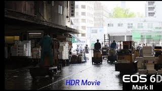 HDR Video in the EOS 6D Mark II Digital Camera