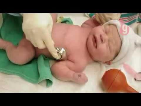 Aula 15 Cuidados com o recém nascido na sala de parto