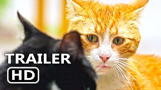 KEDI Official Trailer + Clip (2017) Cats Documentary Movie [HD]