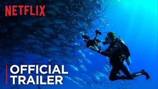 Mission Blue | Official Trailer [HD] | Netflix