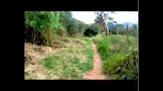 American Indian -  La Necesidad (Ginger's Paradise)