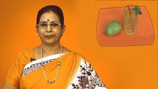 Mango Mint Squash   Mallika's Bakrinath Recipes