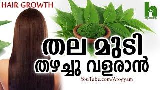 മുടി പെട്ടെന്ന് തഴച്ചു വളരാൻ ഈ ഇല - Latest malayalam health tips
