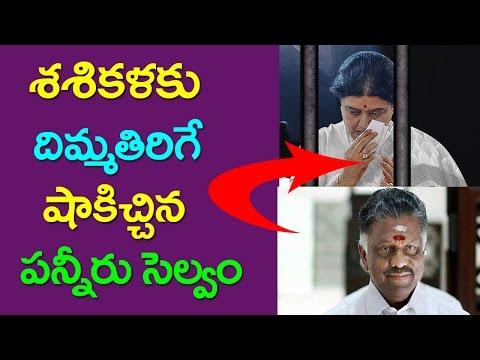 Panneerselvam SHOCK TO Sasikala TTV Dinakaran Tamil Nadu News Taja30
