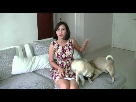 Xxx Mp4 3 Minutes Uncut Andrea Dian Bercerita Tentang Hewan Peliharaanya 3gp Sex