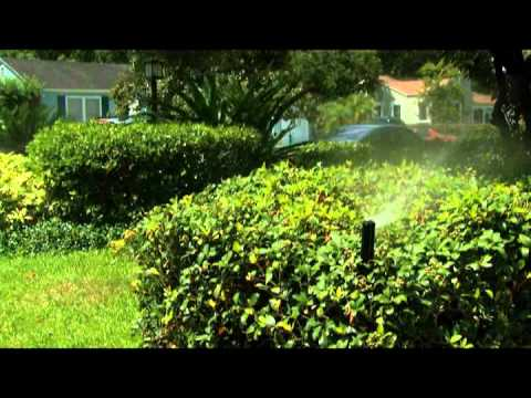 Maintaining Your Sprinkler System