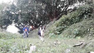 ||MASTI WITH FIRE AND CYCLE RIDE||