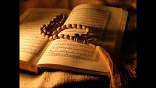 سورة التغابن - ناصر القطامي