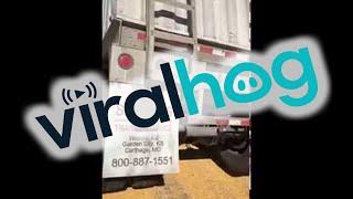 Semi Buckled and Dumped Grain Everywhere || ViralHog