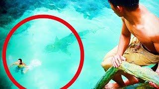 ★ 5 Attaques De Requin En Direct ! VIDEOS AUTHENTIQUES !
