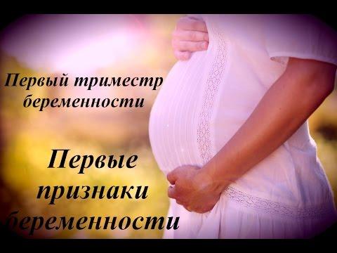 Путешествие на первом триместре беременности