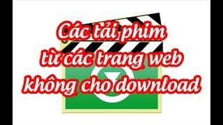 Cách tải phim trên trang Web không cho download hay nhất