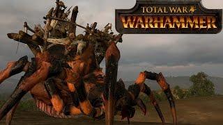 Greenskins vs Manskins - Total War Warhammer Online Battle 34