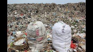 How can individuals combat plastic pollution?