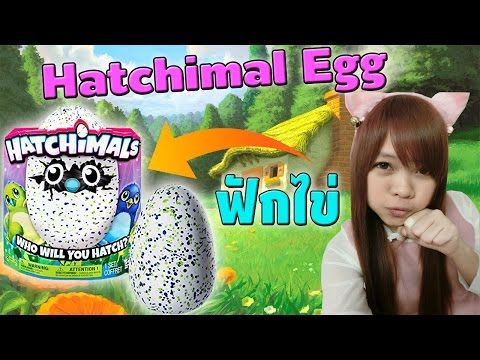 Xxx Mp4 Hatchimal Egg ฟักไข่มังกรน้อยขี้เซา 3gp Sex