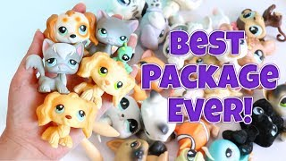 HUGE LPS PACKAGE!!! (So Many Dream Pets!)