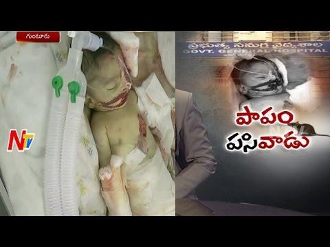 Rats Kills 10 Days Infant In Guntur Government Hospital   NTV
