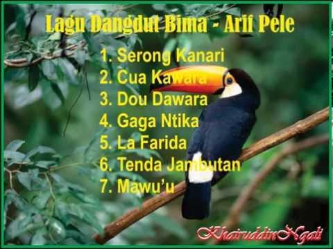Lagu Dangdut Bima Nonstop - Arif Pele