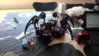 Big robot hexapod