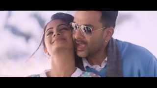 പൊൻ മാനെ പൂം തേനെ - Amar Akbar Antony Full Song Video | Prithviraj, Namitha Pramod...