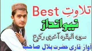 Hazrat Bilal sahab Tilawat