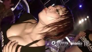 Thai Coyote   Show Girl