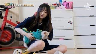 강아지 돌보는 러블리즈 케이 - 애교말투 녹음ㅜㅜ  (Lovelyz Kei takes care of the puppies)