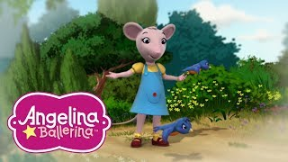 Angelina Ballerina 🎵 Polly's Best Moments 💃