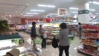 【熊本地震の記録】前震と余震の映像集 Foreshock & Aftershocks of Kumamoto Earthquake