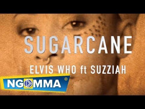 Xxx Mp4 Elvis Who Ft Suzziah Sugarcane Official Lyric Video 3gp Sex
