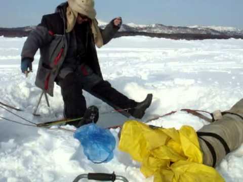 север рыбалка на корюшку