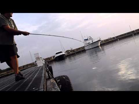 Pesca de Jurel 7 LB Release con popper Venezuela