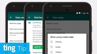 Three ways to reduce WhatsApp data usage (Android) | Ting Tip