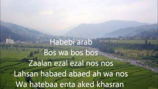 Nancy Ajram  ah we noss lyrics