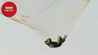 Americano salta sem paraquedas a mais de 7,5 mil metros de altura