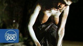 Tribu Africana Zulú. Poligamia