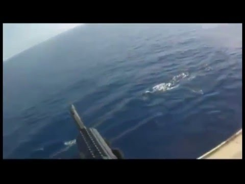 Xxx Mp4 Somali Pirates Mess With The Wrong Ship 3gp Sex
